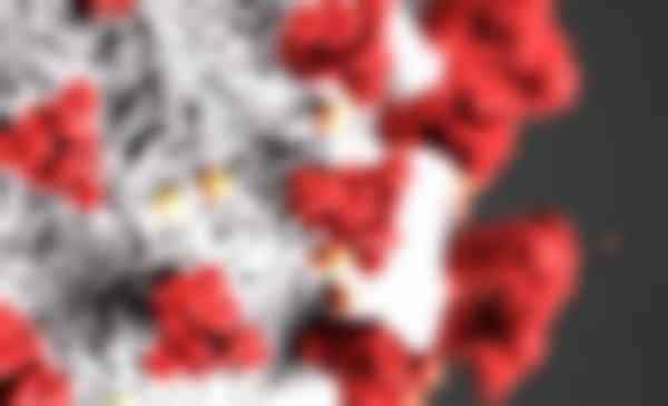 Deze afbeelding heeft een leeg alt-attribuut; de bestandsnaam is corona8.jpg